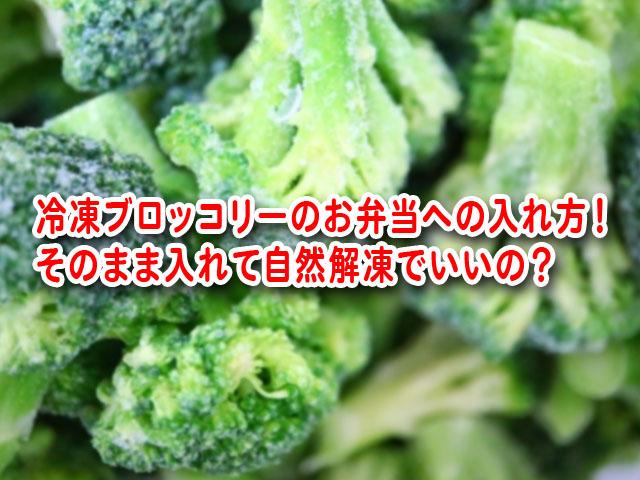 冷凍ブロッコリー お弁当 入れ方